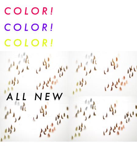 カラーnew広告3